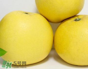 蜜柚是哪个季节的水果?蜜柚和沙田柚的区别是什么?