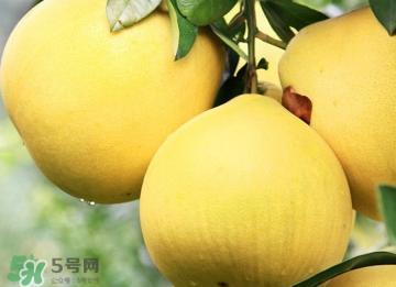 经期能吃蜜柚吗?蜜柚能和葡萄一起吃吗