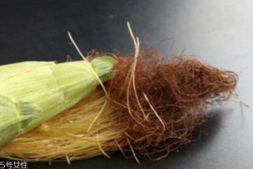 玉米须可以长期喝吗 可以长期食用