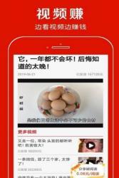 飞燕快网app下载